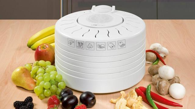 Как выбрать сушилку для овощей и фруктов? Критерии, функции