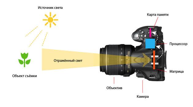 Что такое экспозиция в фотоаппарате? Как настроить экспозицию?