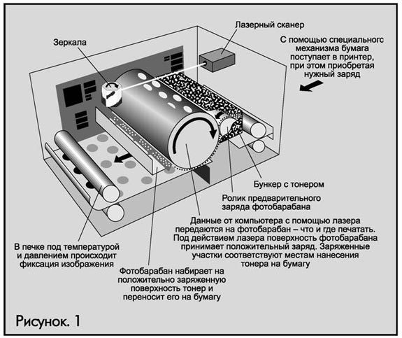 Как печатает лазерный принтер? Принцип работы