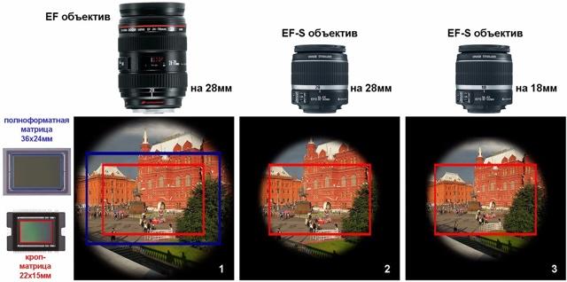 Чем отличается зеркальный фотоаппарат от беззеркального